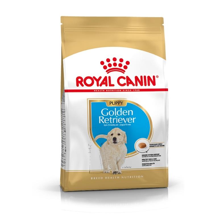 Croquette 3kg Golden Retriever junior Royal Canin