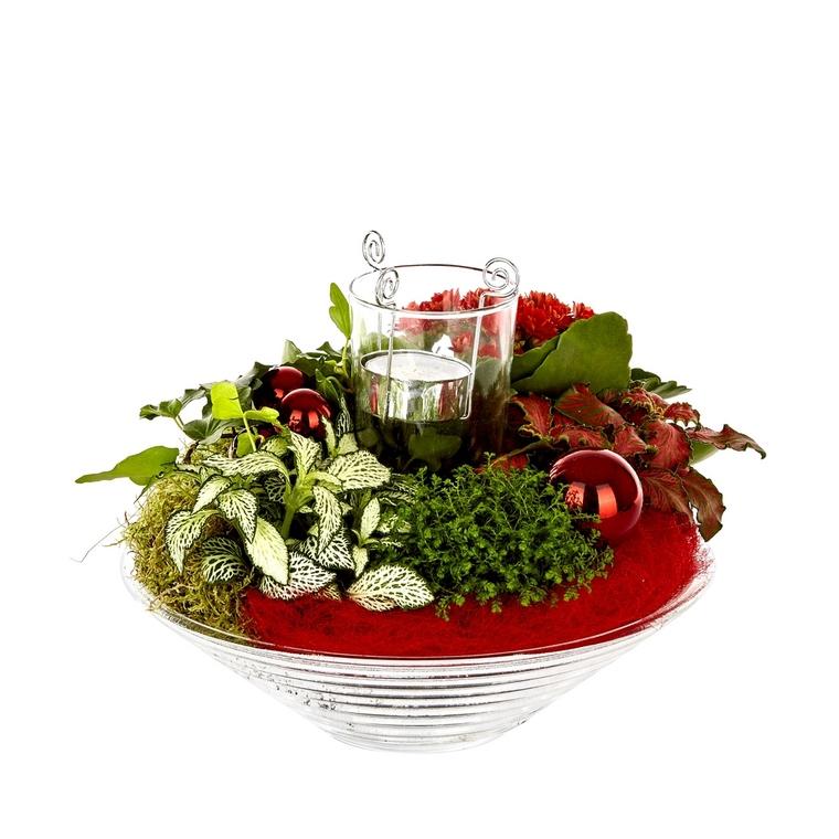 Composition florale de Noël H 25 cm avec verrerie Ø 25 cm 43164