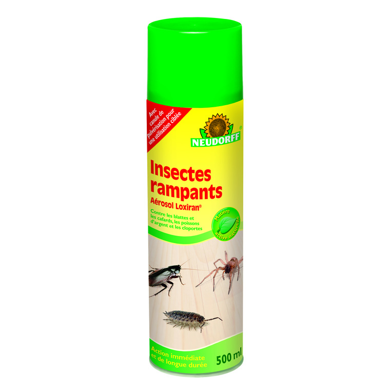 Aérosol insectes rampants 500 ml 438234