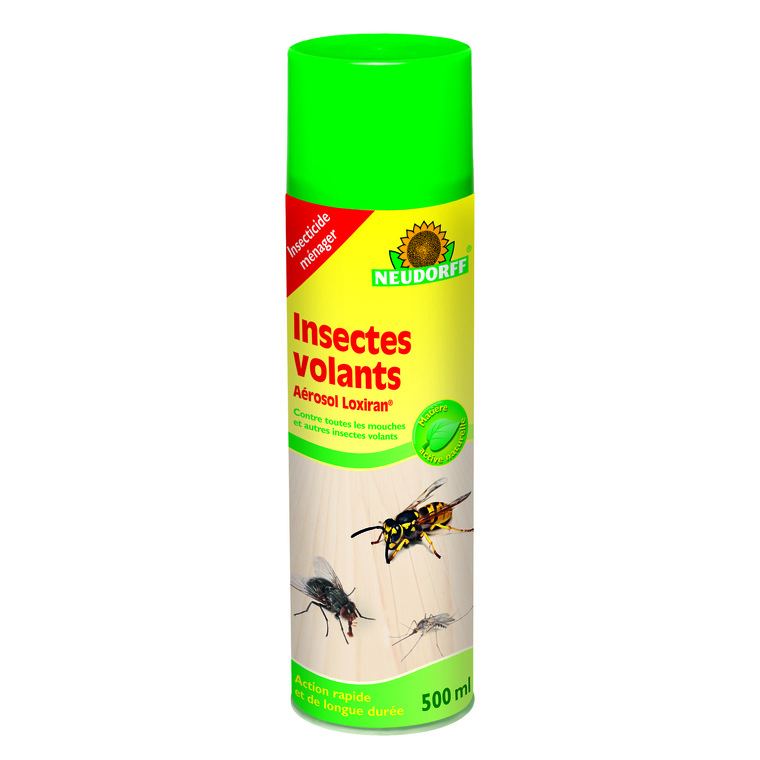 Aérosol insectes volants 500 ml 438237