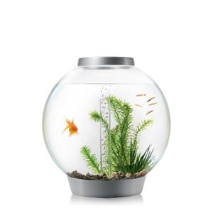 Aquarium BiOrb 30 L silver LED