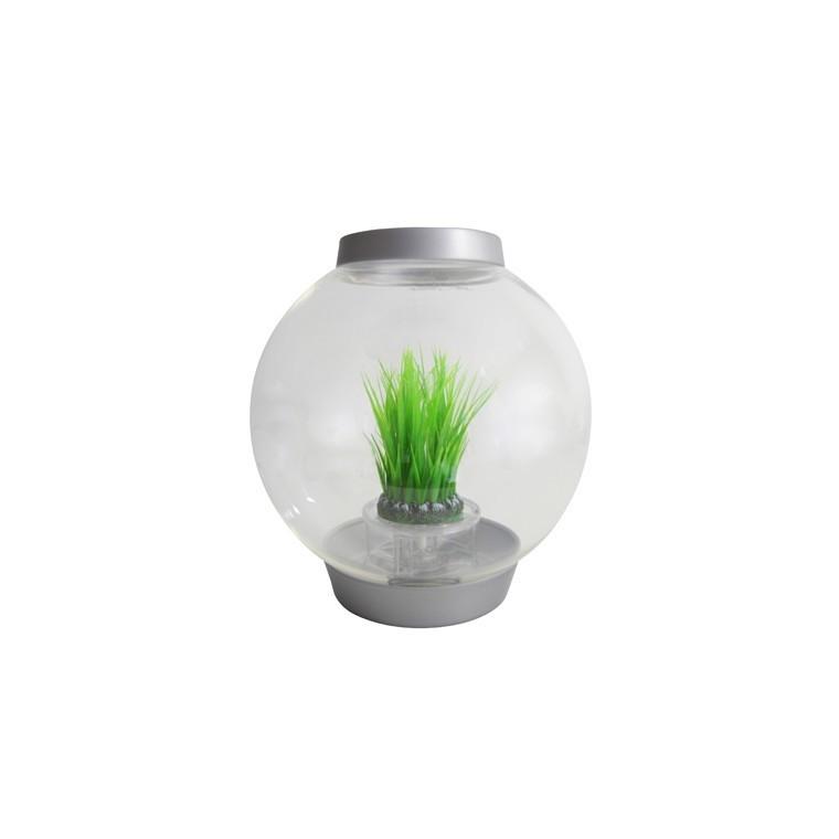 Déco Anneau d'herbe S biOrb - décoration aquarium 441507