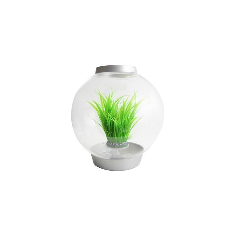 Déco Anneau d'herbe M biOrb - décoration aquarium
