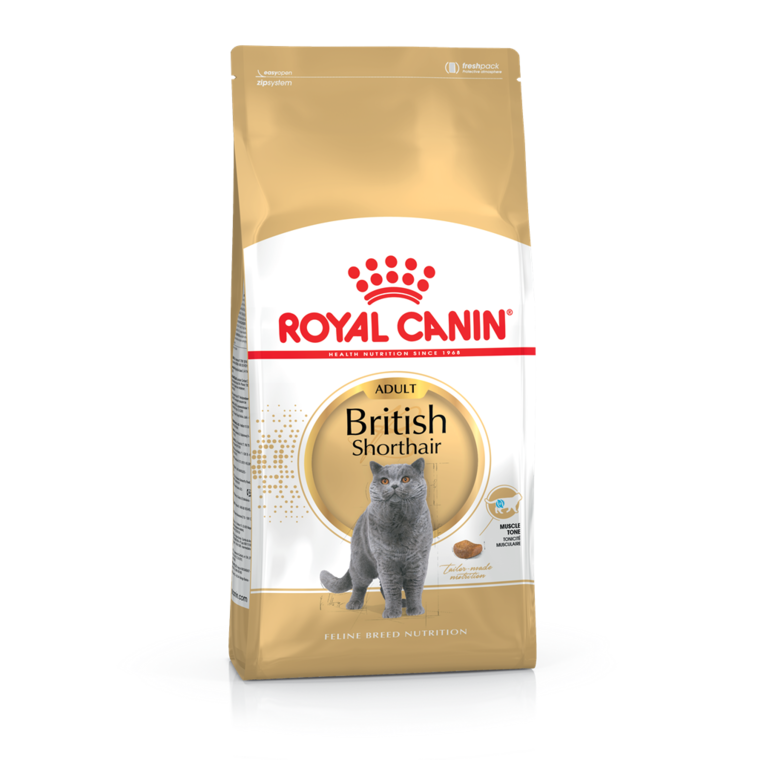 Croquette 2kg chat British shorthair Royal Canin 444198