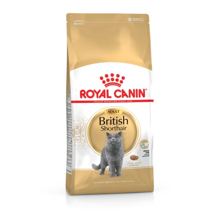 Croquette 2kg chat British shorthair Royal Canin 444198