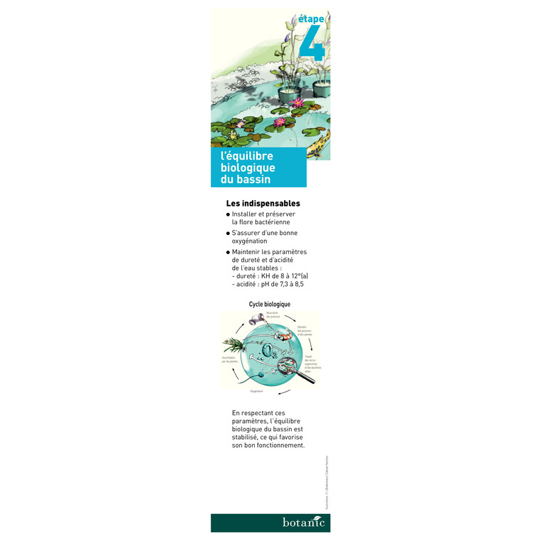 Purificateur de bassin Bactogen 650 gr