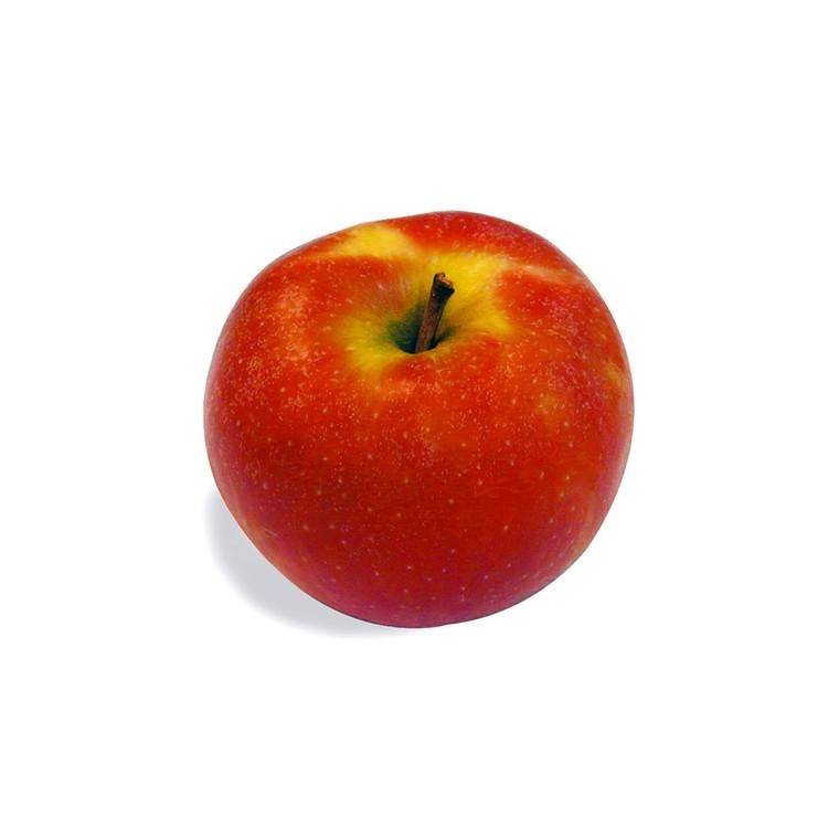 Pomme Elstar Elista Valstar - Prix au kg 448937