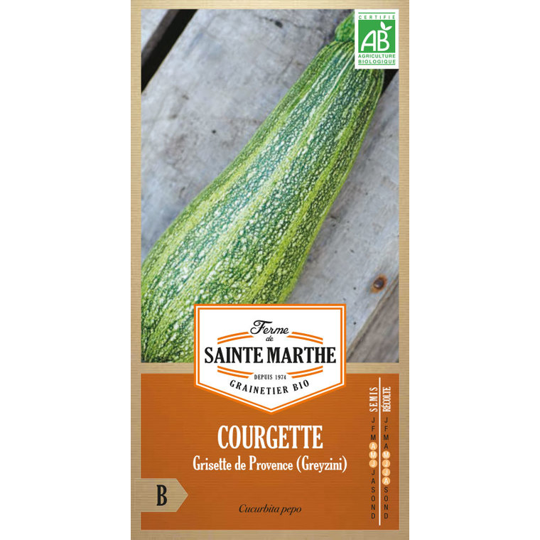 Courgette Greyzini 449451