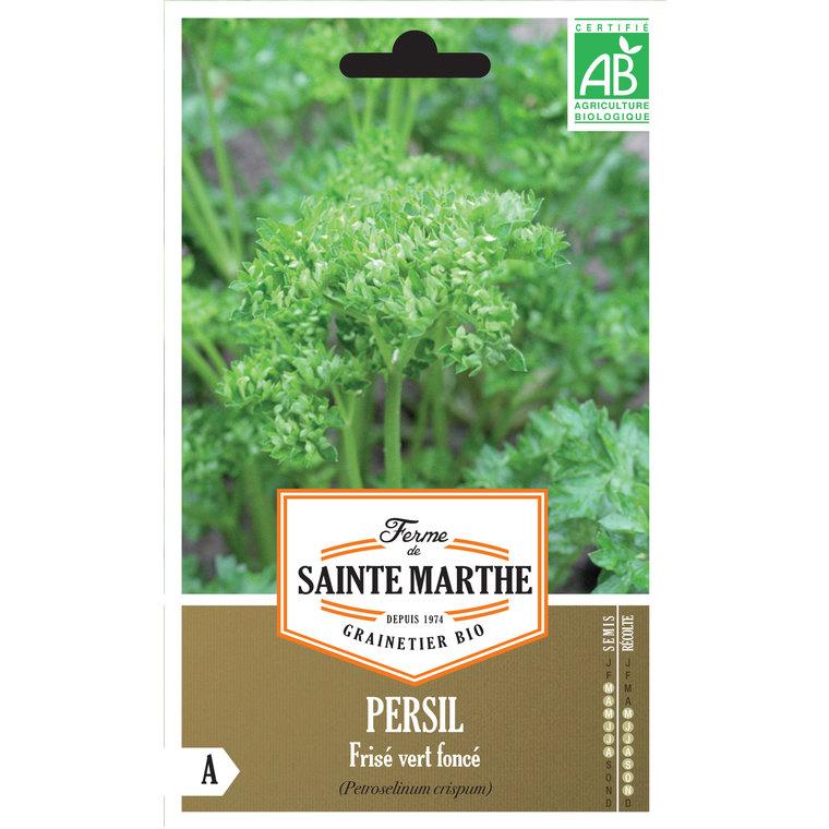 Persil Frisé Vert Foncé 449455