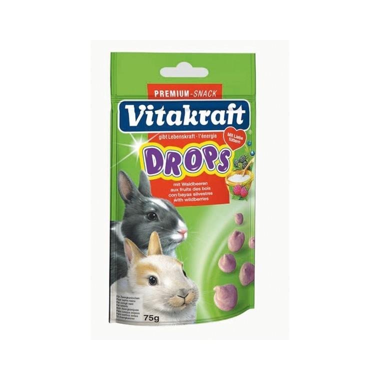Drops lapins nains fruits des bois Vitakraft 75g 483521