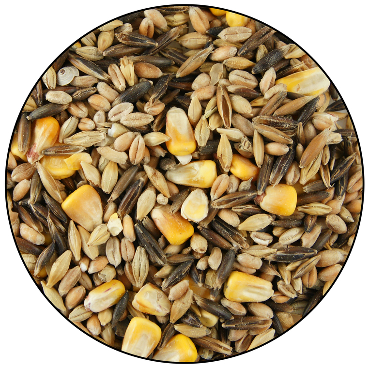 Mélange de céréales animaux de la basse cour 10 kg 48993