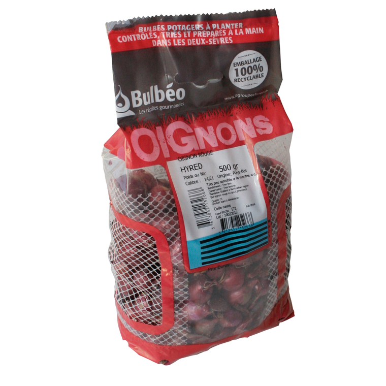 Bulbes d'oignons rouge hyred 500 g 498494