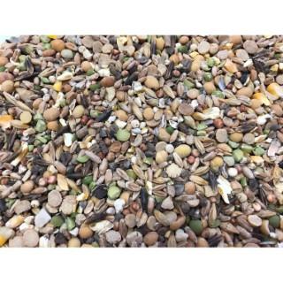 Complément alimentaire Nutrisi coquille en boite mangeoire de 5 kg 524017