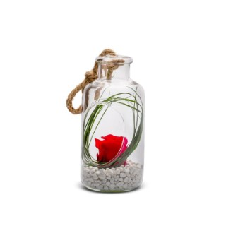 Verrine bottle rouge taille XS Ø 8 x H 17 cm 524037
