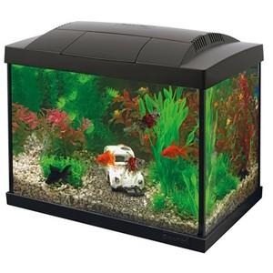 Aquarium Start 20 Goldfish Kit Noir 26xx22x30,5 cm 529261