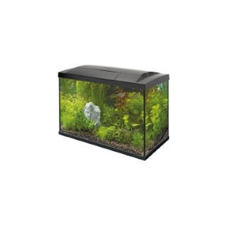 Aquarium Start 70 Tropical Kit Noir 58x30x45 cm 529265