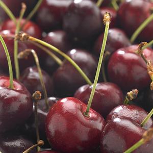 Cerisier Big. De La Saint Jean ®. En racine nue, forme scion 535050