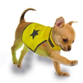 Gilet de sécurité jaune fluo pour chien 40 cm 535861