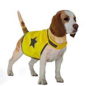 Gilet de sécurité pour chien fluo 48 cm 535862