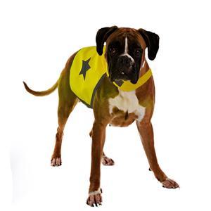 Gilet de sécurité jaune fluo pour chien 56 cm 535863