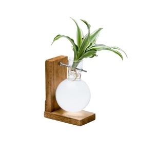 Aquabulle mono pour 1 plante Ø 10 x h 28 cm 536254