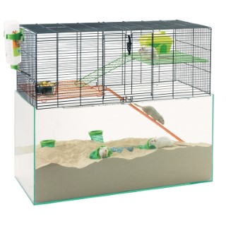 Cage Habitat Transparent 52x26x52 cm 557263