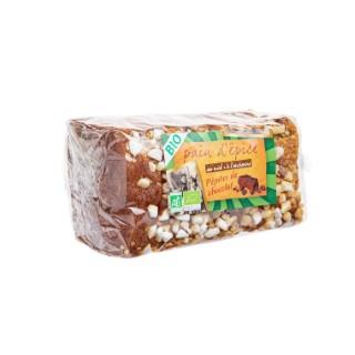 Pain d'épice bio à l'ancienne aux pépites de chocolat 500g 557865
