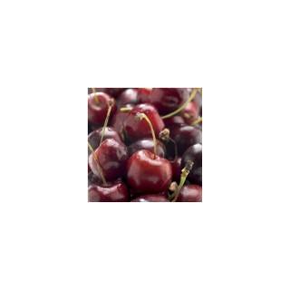 Cerisier Bigarreau Bigalise® forme 1/2 tige 59734