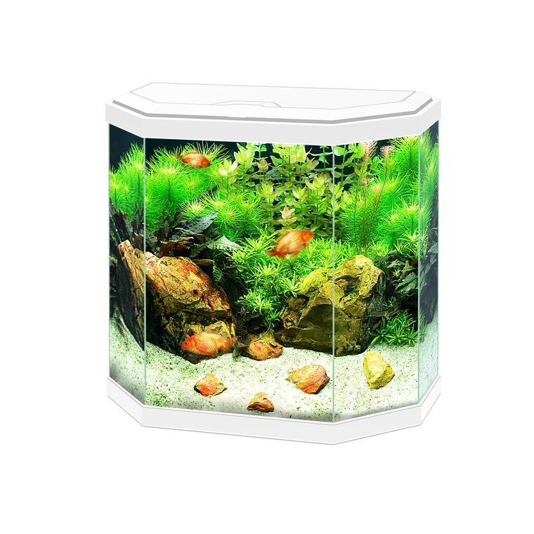 Aquarium 30 Light blanc 30L