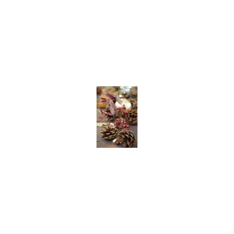 Guirlande lumineuse pommes de pin argentées 180 cm