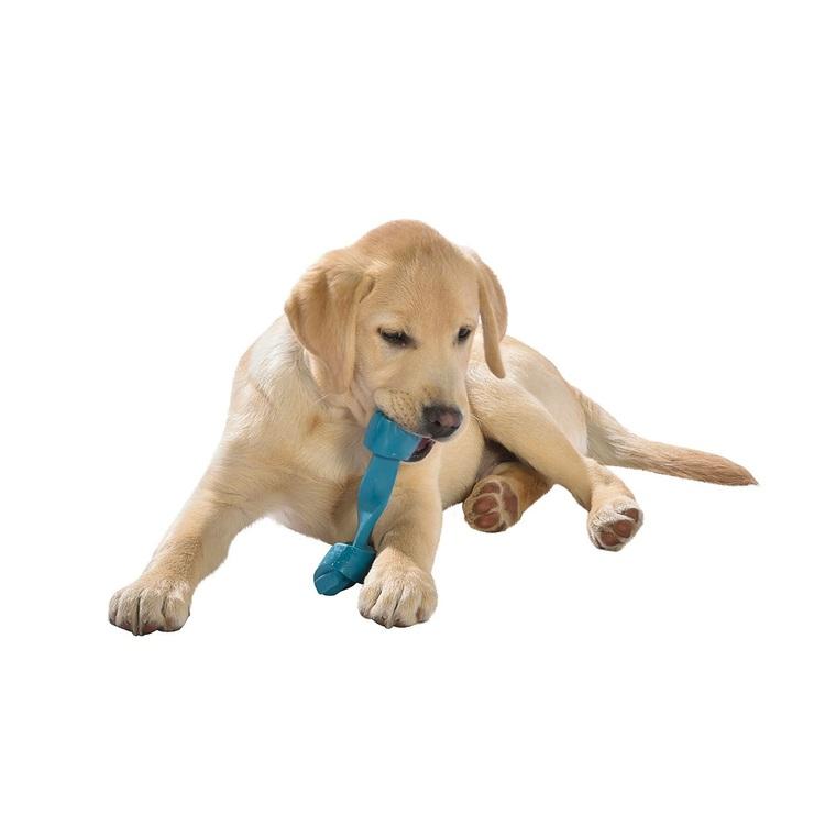 Jouet rope bleu pour chien, moyen format 535868