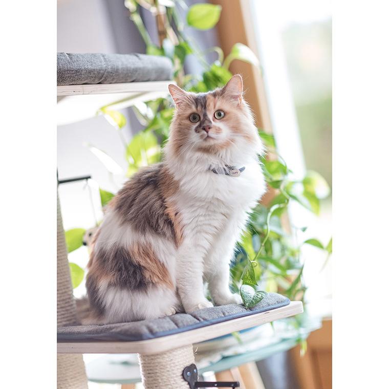 Arbre à chat Oslo 48 x 8 x 109 cm 535916