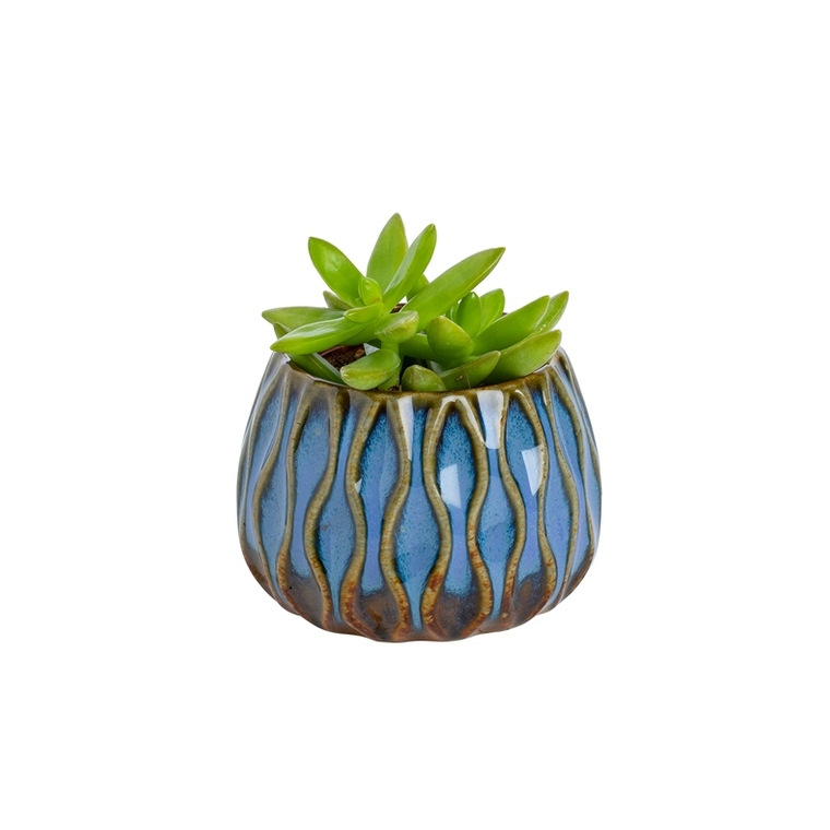 Plante verte + cache-pot magnétique 55119