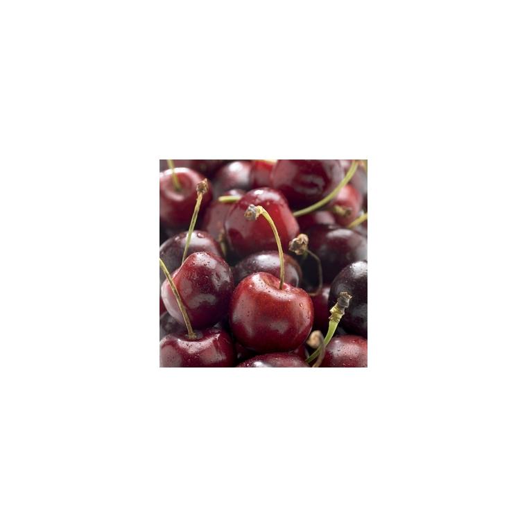 Cerisier Bigarreau Bigalise® forme gobelet 59735