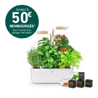 Potager Véritable Connect – Moonlight Gold 611530