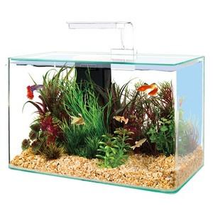 Kit aquarium équipé 17 L Aqua Clear 40 blanc 40x20x33 cm 616084