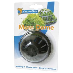 Support Dôme pour Mousse de Java Ø 7xH4 cm 63401