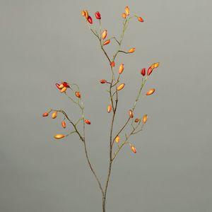 Branche cynorrhodon H88 cm 635118