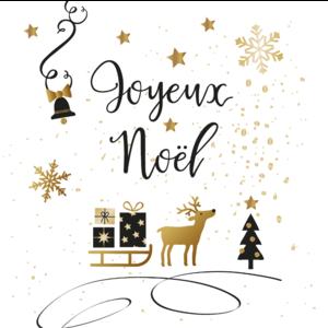 Serviettes x20 3 plis 33x33 cm Joyeux Noël 635250