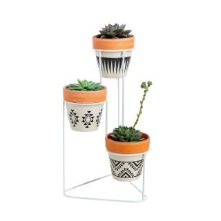 Assemblage de 3 plantes succulentes avec support et pots décoratifs 635461