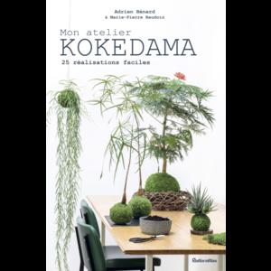 Mon atelier Kokedama 640114