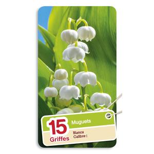 Muguet nantais blanc en pochette de 15 plants 640745