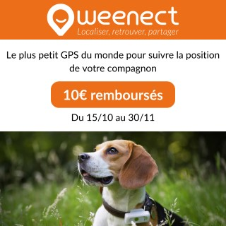 Weenect Dogs 2 – Collier GPS pour chien 648690
