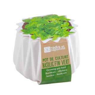 Petit pot origami de Basilic fin vert Bio à semer H 6 x Ø 6 cm 655603