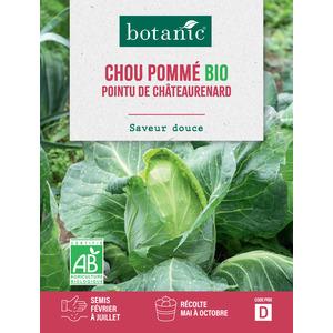 Livret Chou cabus de Chateaurenard bio vert 657521