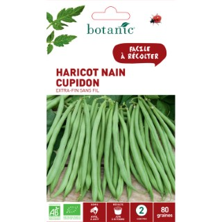 Sachet Haricot nain cupidon extra-fin sans fil bio 80 graines vert 657526