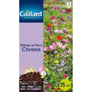Sachet Mélange de fleurs chrono multicolore 657542
