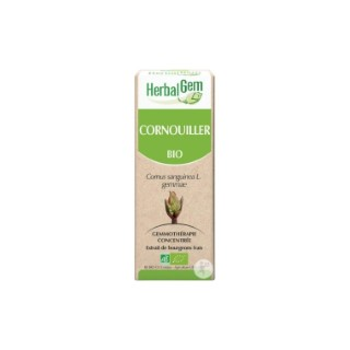 Cornouiller Bio 50 ml  beige 658221