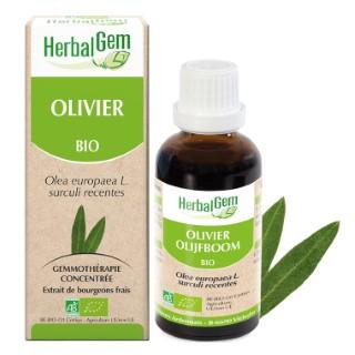 Olivier Bio 50 ml beige 658230