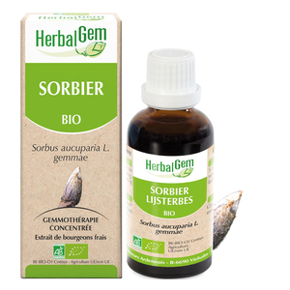 Sorbier bio Flacon 50 ml beige 658242